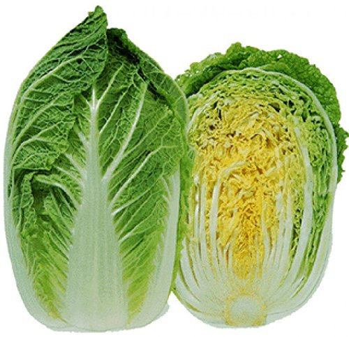 Pepper Agro Chinese Cabbage Vegetable seeds 2 packs - Pepper Agro