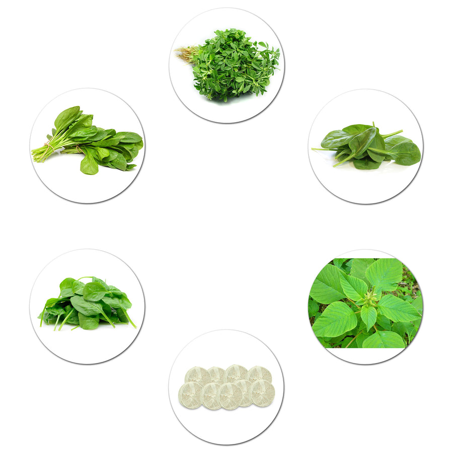 Pepper Agro Micro Green Leafy Vegetable Seed 5 Variety with Free Germination Root Plug - Pepper Agro