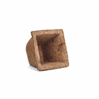 Pepper Agro Coir Planter Coco Fiber Flower Pots Spanish Cup Biodegradable Square Shape