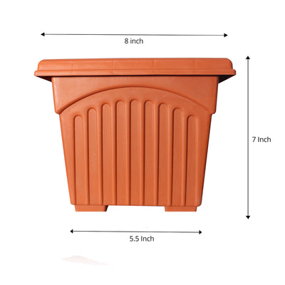 Pepper Agro Square Flower Planter/Pot Buy Online