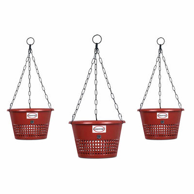 Pepper Agro Orchid Hanging Flower Pots with Metal Chain 10 inch