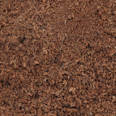 Coco Peat Cocopeat Powder Hydroponics Horticultural Grade200 Gram | Buy Online