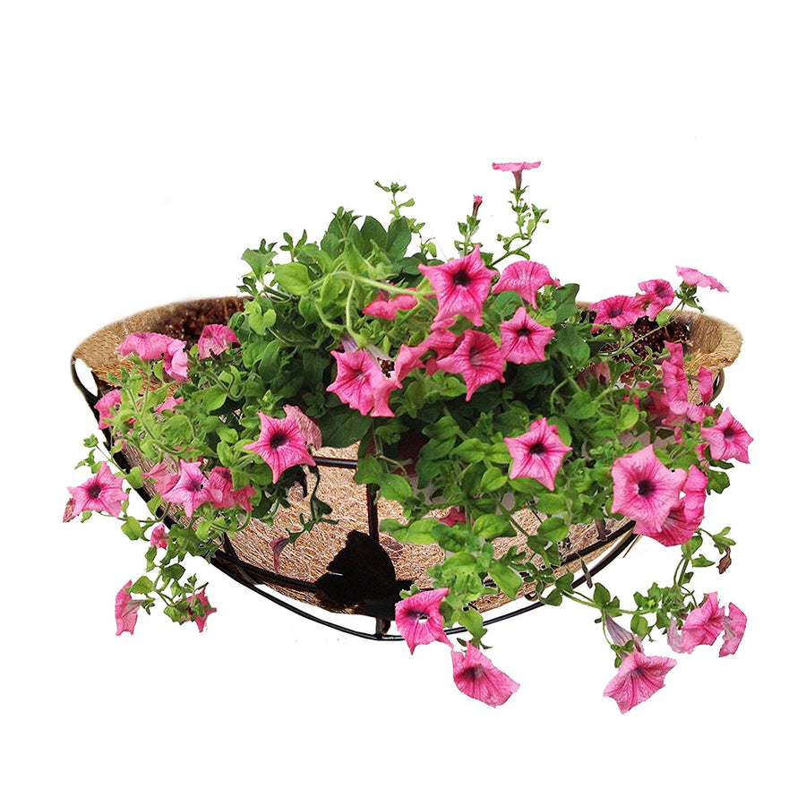 Pepper Agro Coco Fibre Metal Frame Half Circle Wall Mount Planter Of 1 Qty+ Potting Soil