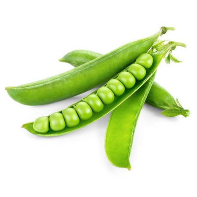 Peas Long sweet Vegetable Seeds 1 Pack Comes With Free Pot & Root Plug | Buy Online