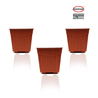 Pepper Agro - 4 Inch Square Planter (Terracotta) - Pieces Of 3