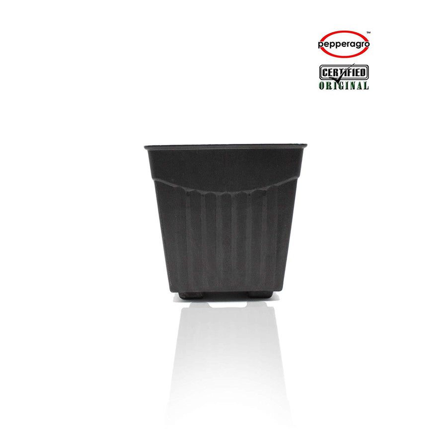Pepper Agro - 4 Inch Square Planter - Pieces Of 3 Black