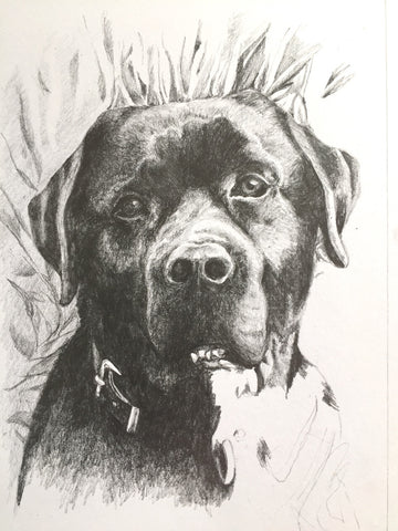 'Mac', a portrait in graphite pencil by Katie Manning