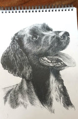 Inspired arts articles - 'Monty', pet potrait by Katie Manning