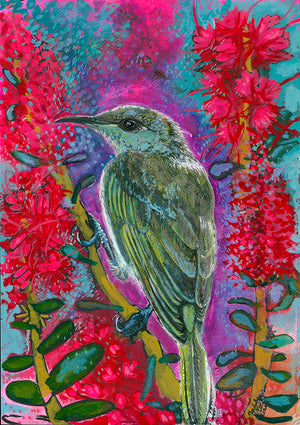 Brown-winged Honey Eater, artwork by Mychelle Mahar