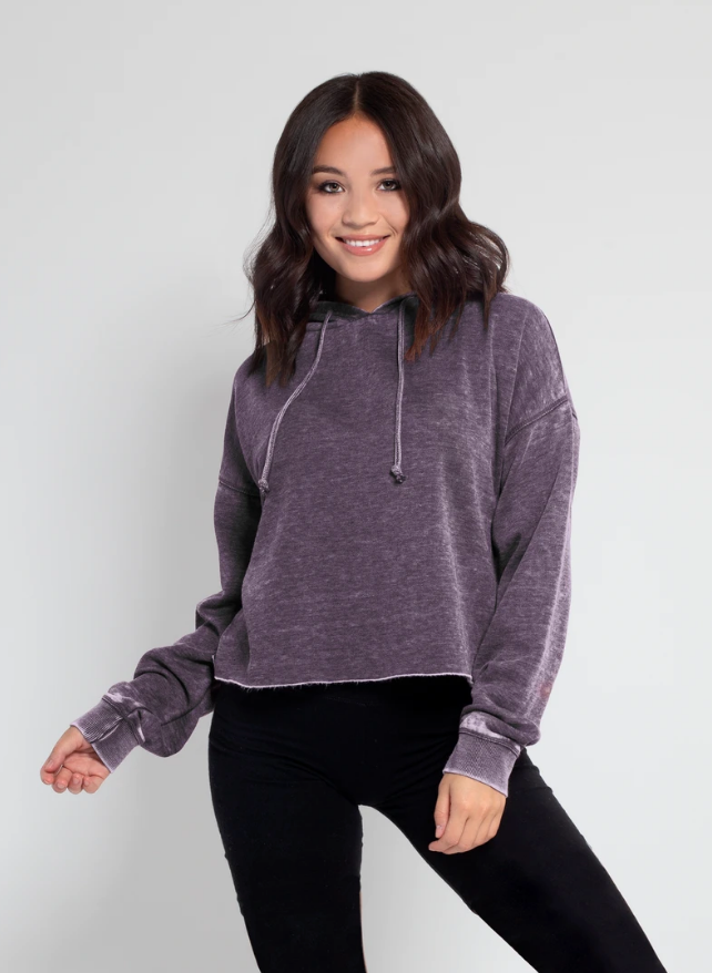 Chicka-d Burnout Cropped Hoodie