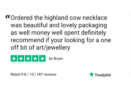 Scottish Highland Cow jewellery gift review