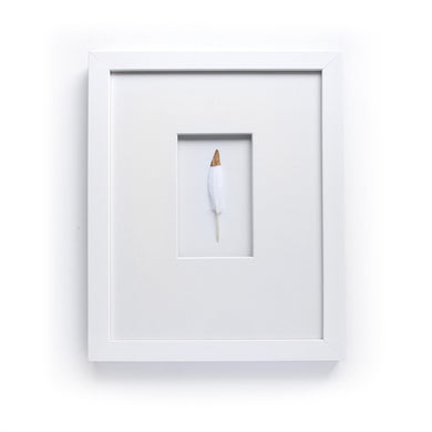 Gold Tipped White Feather in Matte White Frame