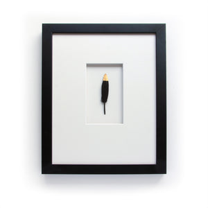 Gold Tipped Black Feather in Matte Black Frame