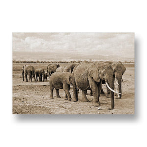Elephant Herd Canvas Print in Sepia