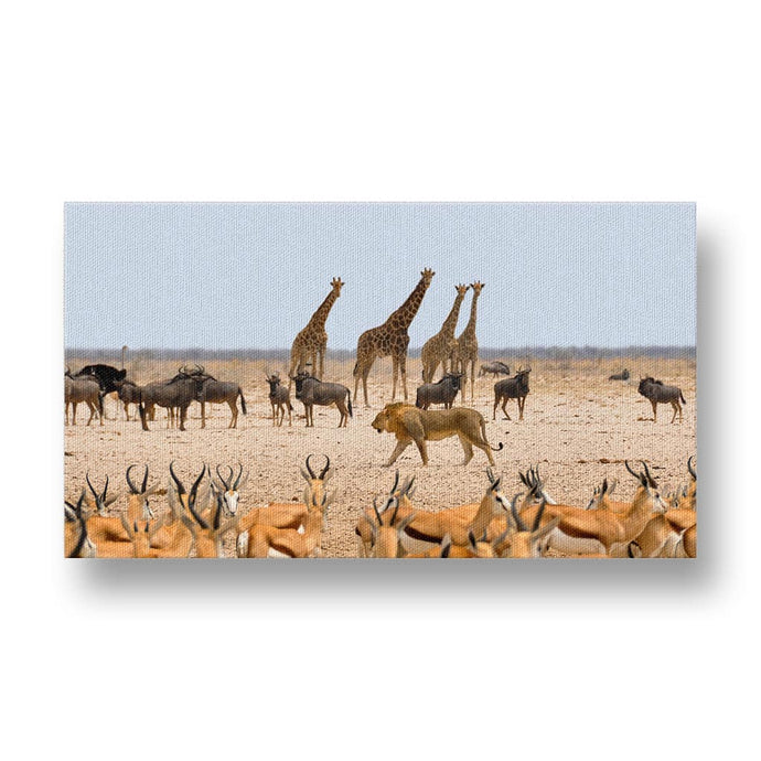 Lion between Animals Canvas Print in Colour