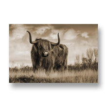 Bull Canvas Print in Sepia