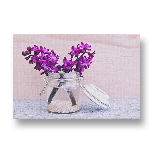 Pink Hyacinth Canvas Print in Colour