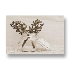 Pink Hyacinth Canvas Print in Sepia