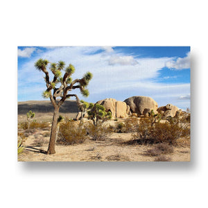 Joshua Tree National Park Canvas Print in Colour