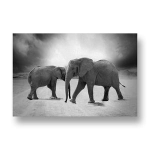 Elephants in Desert Canvas Print in Black and White