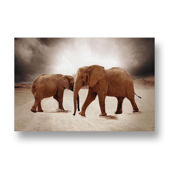 Elephants in Desert Canvas Print in Colour