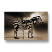 Zebra with Baby Canvas Print in Sepia