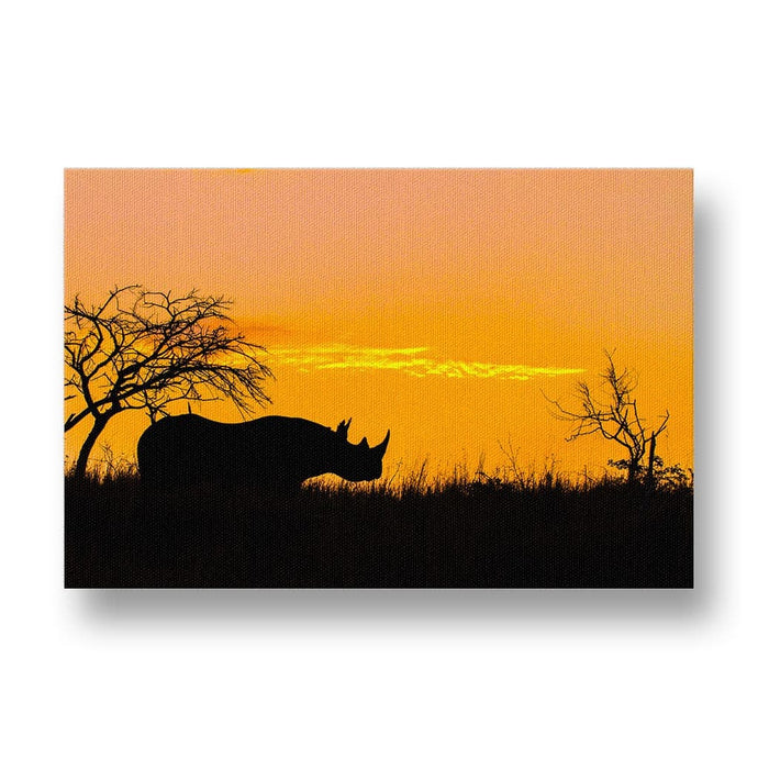 Black Rhino at Sunset Canvas Print
