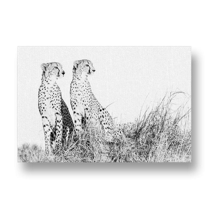 Cheetah Siblings Canvas Print