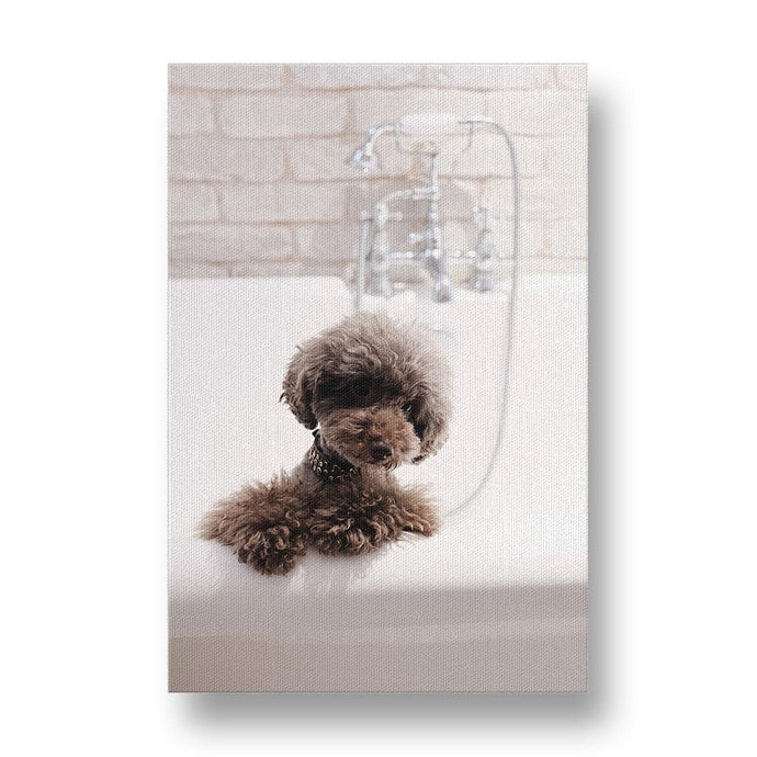 Poodle Bathtime Canvas Print