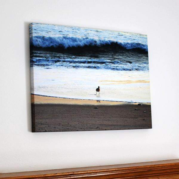 Sandpiper Large Photo Art Print On Canvas - Fearless - Maven Flair