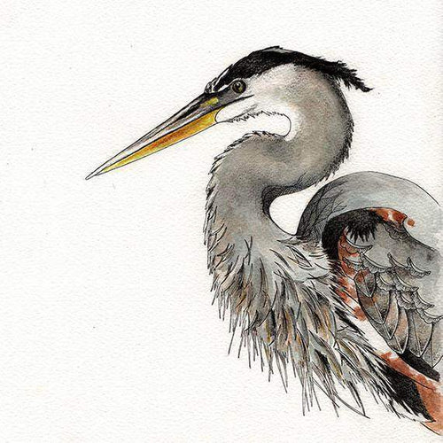 Heron Print Bird Art Illustration Print