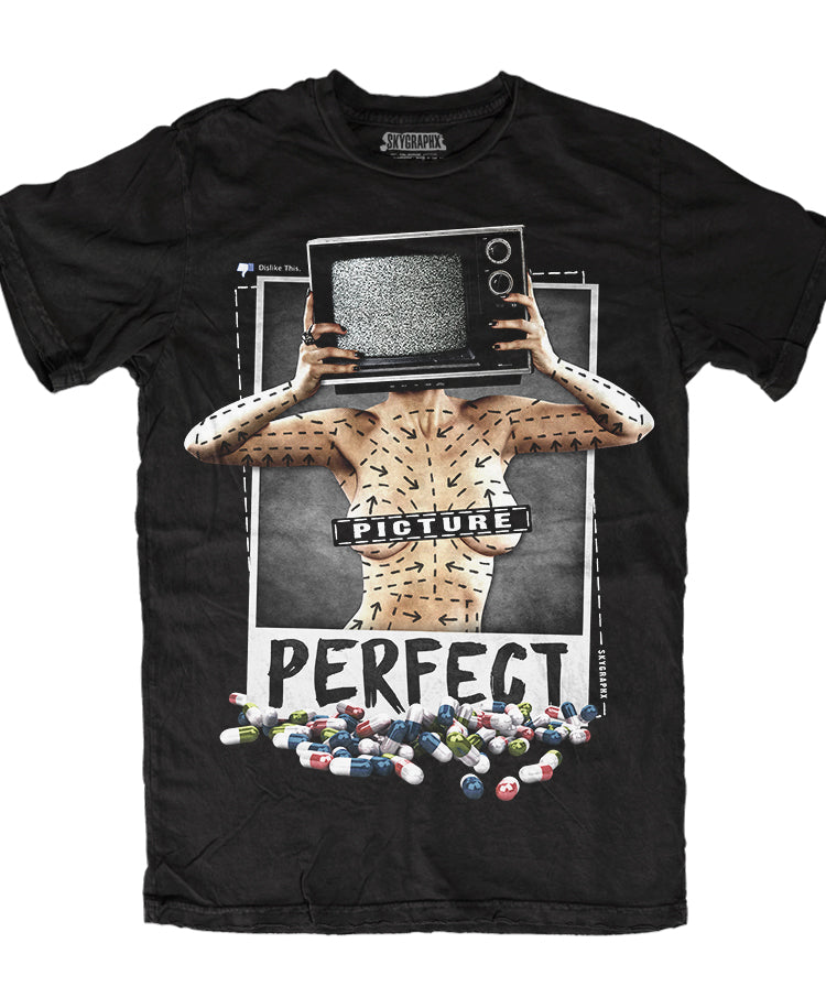PICTURE PERFECT T