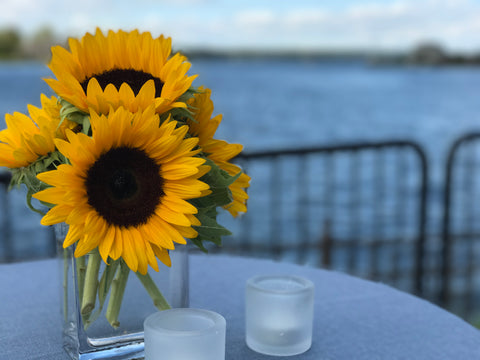 Oceanport, New Jersey corporate event flower arrangements of sunflowers done by Gig Morris Florist in Belmar, New Jersey