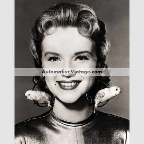 Anne Francis Glossy Black & White Vintage Movie Star Photo 8.5 X 11