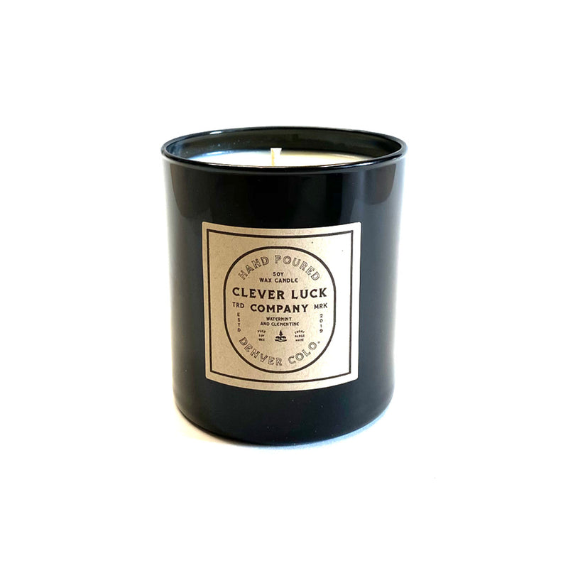 Soy Candle - Watermint and Clementine