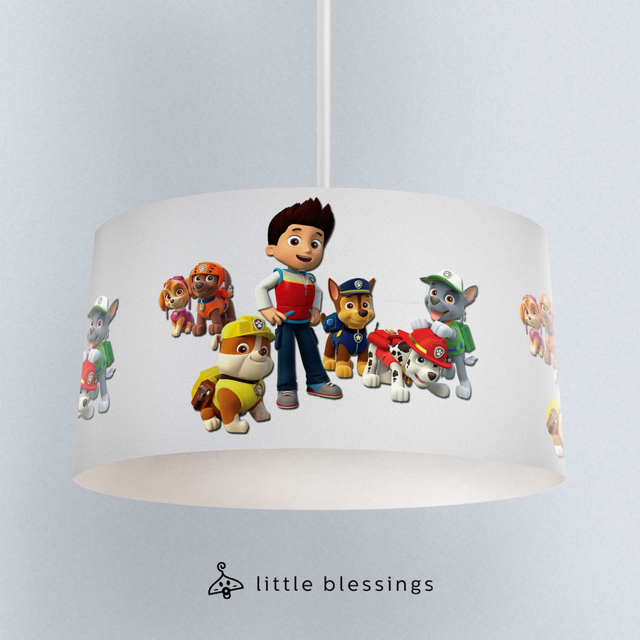 Paw Patrol Ceiling Lighting