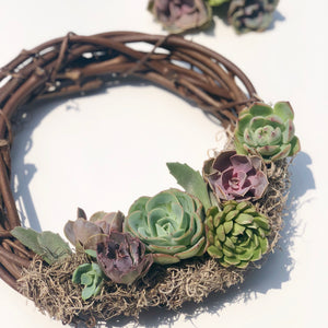 Learn & Take: Succulent Wreath Making