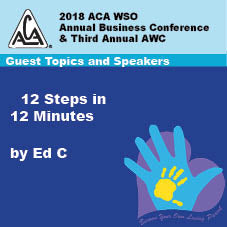 2018 AWC - Ed C - 12 Steps In 12 Minutes  (CD not available; download only)
