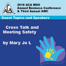 2018 AWC - Mary Jo L - Cross Talk & Meeting Safety  (CD not available; download only)