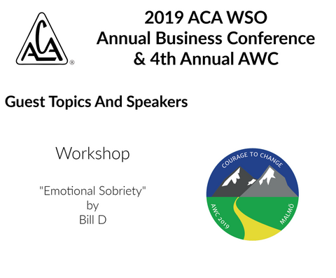 2019 AWC - Emotional Sobriety - Bill D (USA) (CD not available; download only)