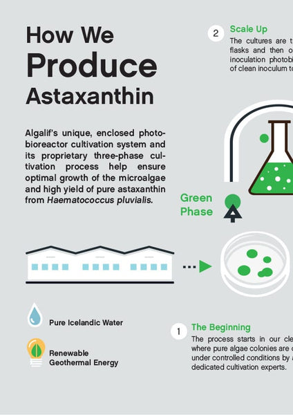 Download how we produce Astaxanthin