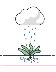 Watering by hose or sprinkler is a traditional watering method and it only reaches the top few inches of the soil.