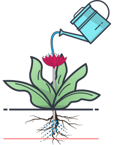 Deep root watering with the help of watering stakes is the key to healthy plants.