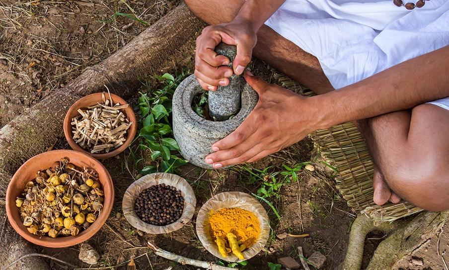 The Medicine in Ayurveda