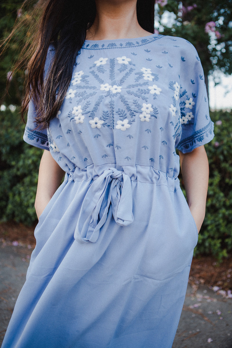 Celeste Embroidered Dress