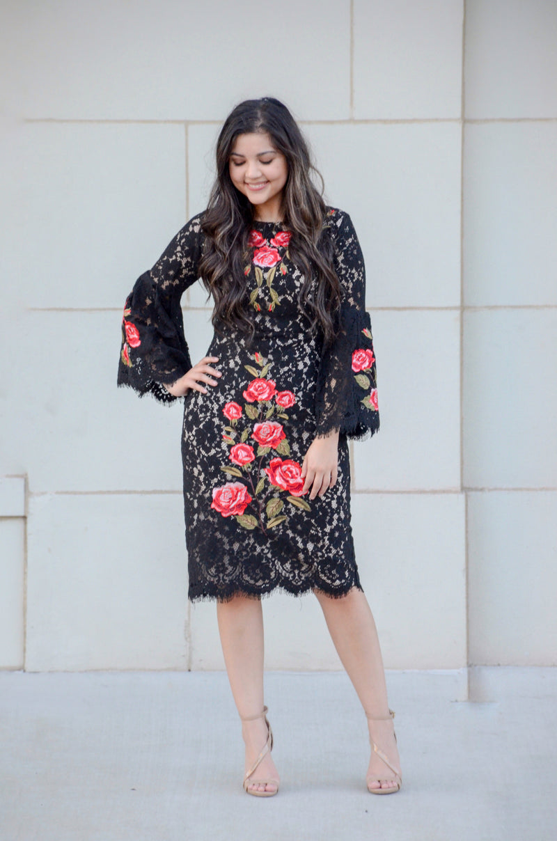 The Olé! Embroidered Dress