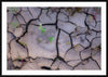 Mud Cracks - Andre Distel Photography