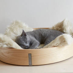 How to Find The Perfect Designer Cat Bed | Luxury Cat Products