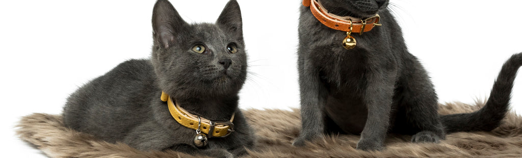 Land of Meow Linny Cat Collar Collection