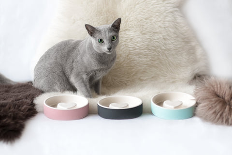 Land-of-Meow-Magisso-Heart-Cat-Bowl-Multiple-Colours